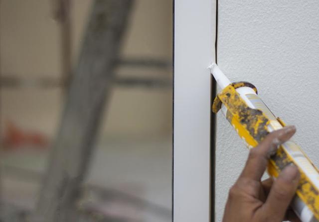 Pest Proofing Your Home This Fall