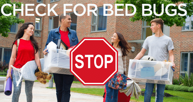 Tips from the Pros to Avoid Bed Bugs at College