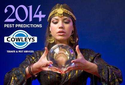 Let's see how Cowleys does in predicting what kind of pest year 2014 will be....