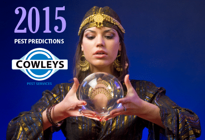 4 Pest Predictions for 2015