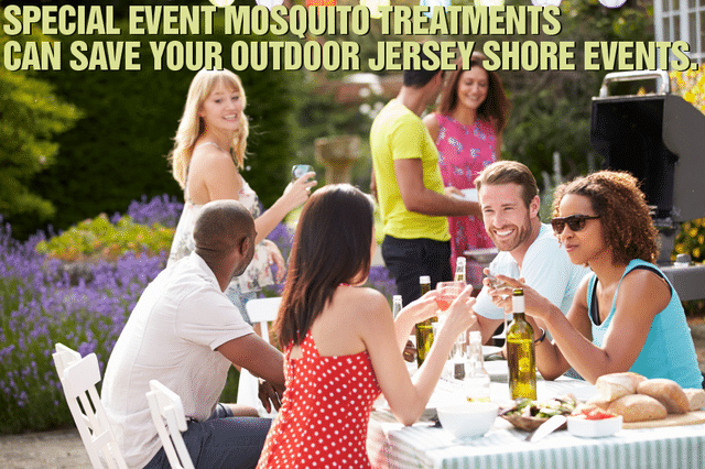 Don't Let Mosquitoes Drive You Indoors: Reclaim Your Backyard and Enjoy the...