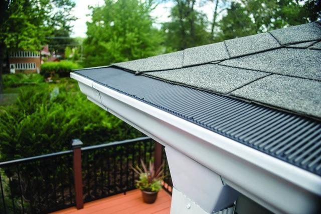 Clogged Gutters, the Often-Overlooked Source of Pest Problems