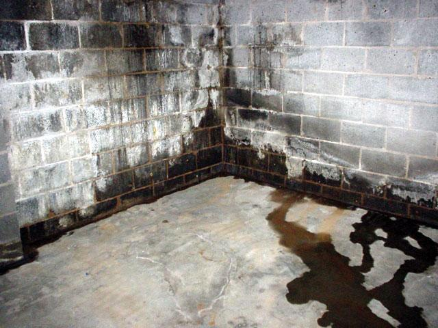 Your basement or crawlspace is wet and moldy, and the experts tell you that it's because there's moisture underneath your...