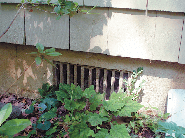 Learn why your crawl space is damp, smells musty, and has mold - and what you can do to fix...
