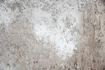 Efflorescence on concrete basement walls