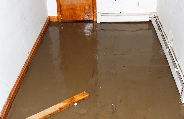 If you're dealing with a flooded basement, follow these steps to clean up the basement and protect against future flooding....