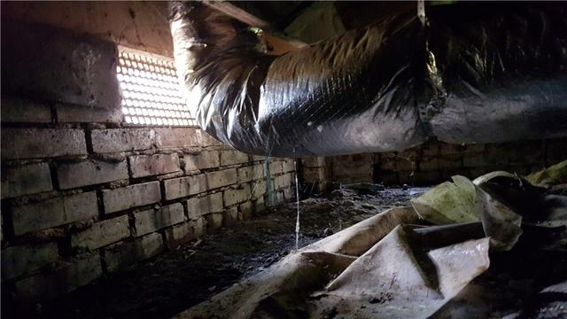 My Crawl Space But I Never Go Down There So Why Should I care  - Image 1