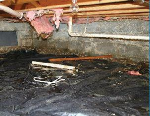 Moisture Control and Your Arkansas Crawl Space
