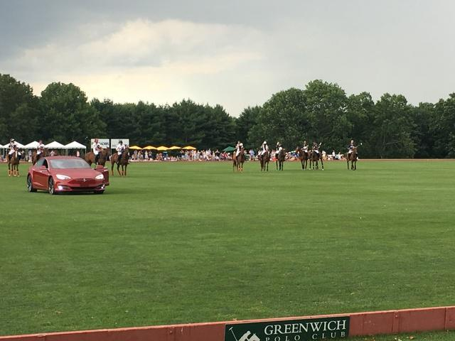 Greenwich Polo Grounds - Image 2