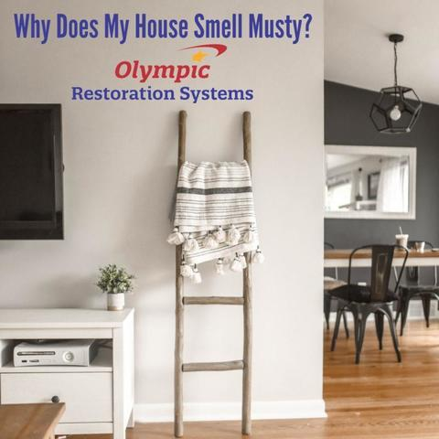 Why Does My House Smell Musty?