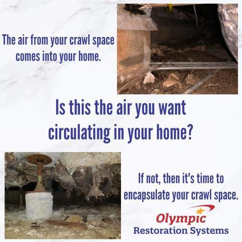 Why Is My Crawl Space Moldy?