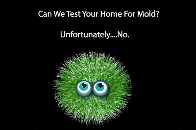 Can We Test Your Home For Mold? Unfortunately....No.