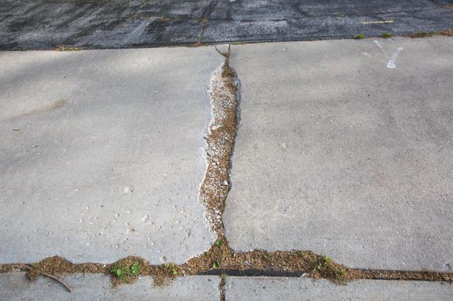 This pitting concrete walkway has been damaged by years of water damage
