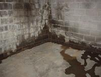 Why Should I Waterproof My Basement - Image 1