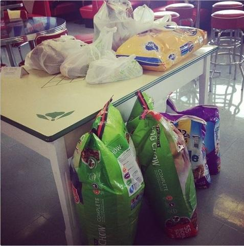 The Treehouse gathered money, food, toys and other items in order to donate them to the local animal shelter down...