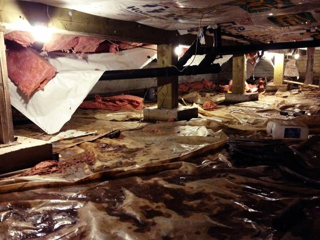 Your Crawl Space Can Have an Impact on Your Health