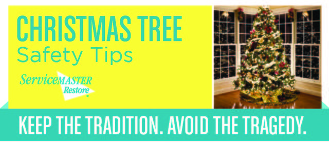 Christmas Tree Safety Tips!