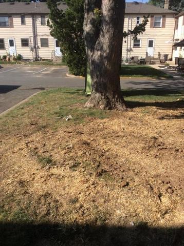 Metuchen Multi Town House Sewer Repair Job