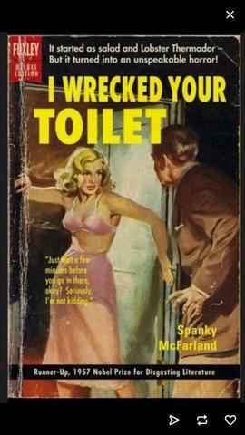 Top Ten Toilet Troubles