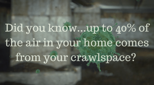 Do You Have a Damp and Humid Crawlspace? -  Council, NC 28434