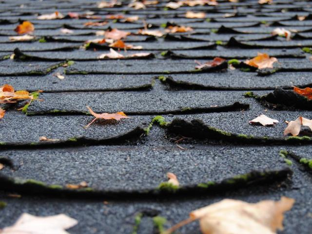 Why Every Single (Asphalt) Shingle Matters.