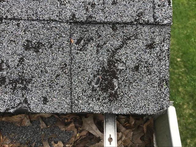 Do I Really Need a New Roof? 7 Signs to Look Out For