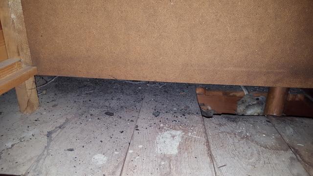dirt under a built-in dresser