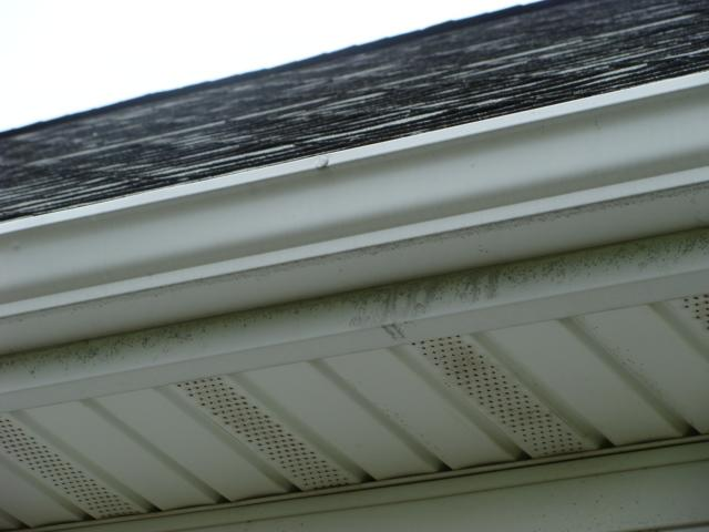 The functions and maintenance of Fascia and Soffit and why they are important to preserving your roofing system....