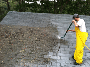 If you look up at your roof this spring and notice a lot of black streaking and dark stains, you...