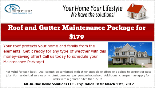 Roof and Gutter Maintenance Package