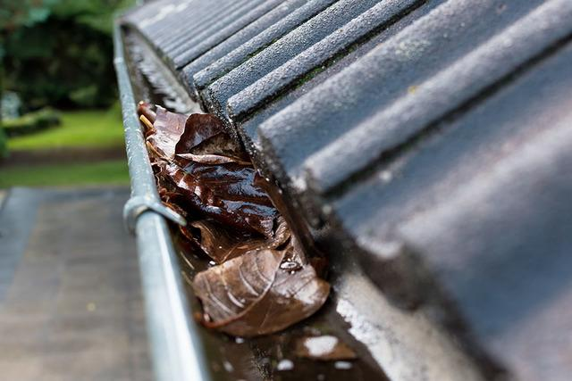 3 Tips for Fall Gutter Cleaning by Sela Gutter Connection