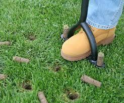 As a lawn becomes more mature, typically the soil beneath it will become more compacted. This compaction will eventually harm...
