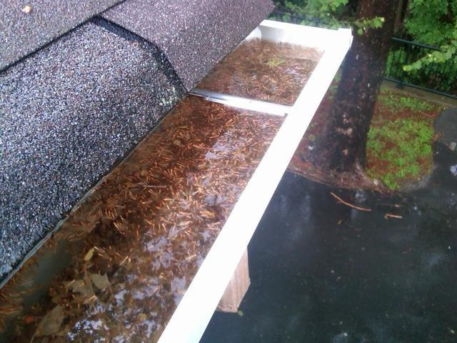 Why Do You Need To Clean Your Gutters?