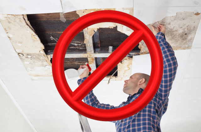 Learn about the dangers of DIY mold remediation....