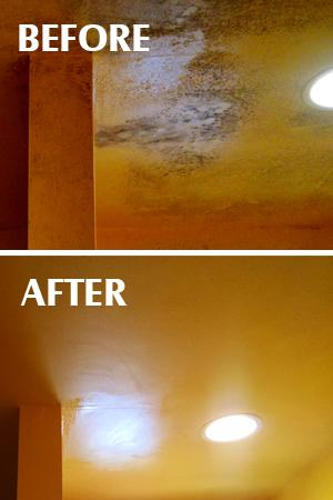How to save a sale if mold is discovered....