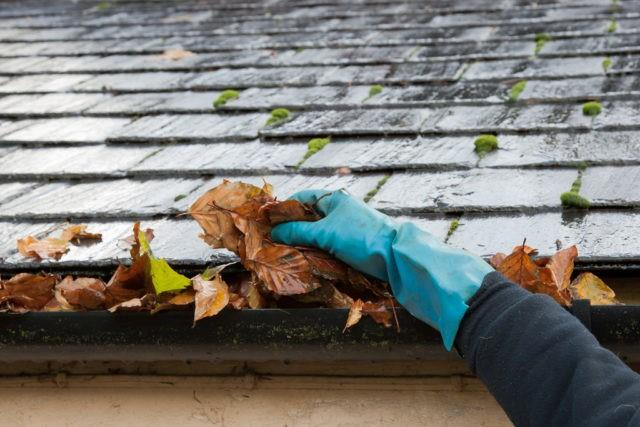 Major damage to your home can be caused from clogged gutters -- everything from your roof and attic to your...