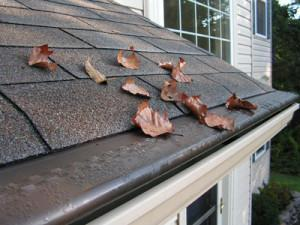 4 Risks of Clogged Gutters