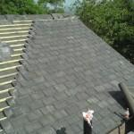 roofing contractor reviews West Roxbury ma