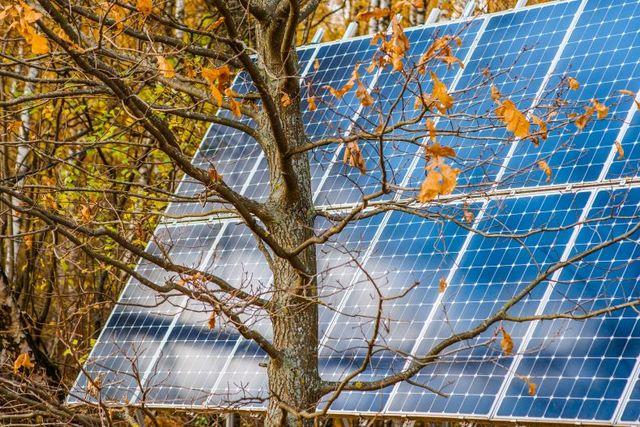 3 Reasons to Install a Solar System in Autumn