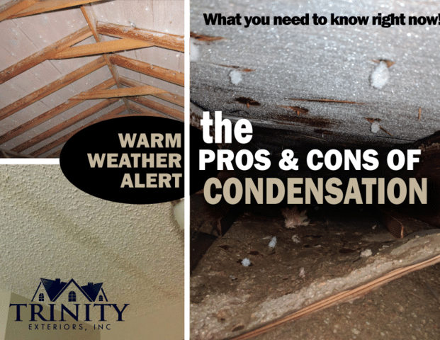 With our recent historic cold temperatures and sudden Warm-up shifting yet again, some homes may be experiencing melting condensation and/or...