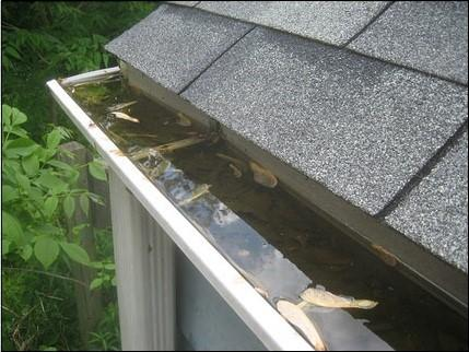 Help Prevent Mosquitoes with Gutter Guards