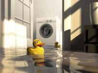 Any Northern Virginia homeowner knows that a damp basement can cause water damage, which can be stressful and expensive to...
