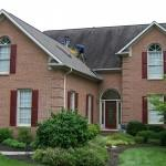 Black Roof Stains? Check for Algae! - Image 1