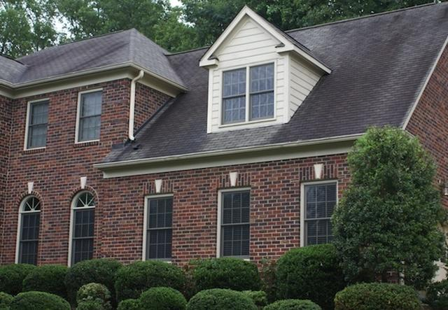 Black Roof Stains? Check for Algae! - Image 2