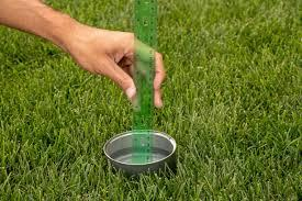 The 411 on H2O - How to water your lawn correctly. - Image 4