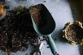 The New Dirt Deal - Making Your Own Potting Soil. - Image 2