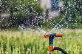The 411 on H2O - How to water your lawn correctly.