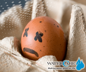 If you can't get rid of the smell of rotten eggs in your home, the problem most likely is high levels of sulfur in your water.