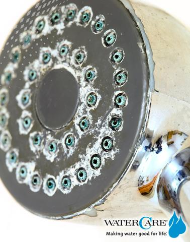 close up of shower head with scale build up