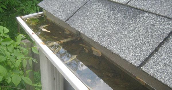 Clogged gutters a normal part of life for most homeowners. You try to keep them clean and clear of debris,...